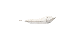 Fotógrafos en Asturias
