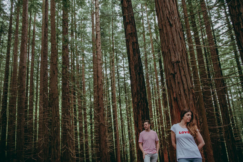 sequoia engagement session